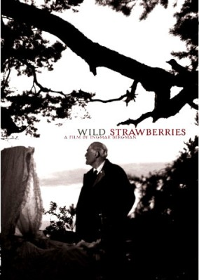 Buy Wild Strawberries: Av Media